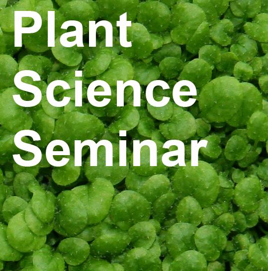 seminar teaser